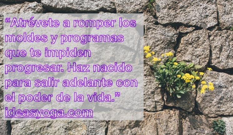 Romper moldes - Frases motivadoras inspiradoras - Poder vida- ideasyoga