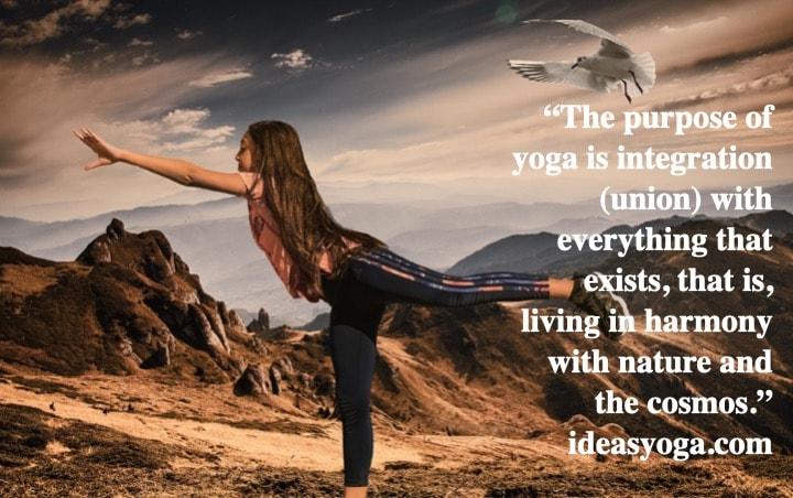 Yogas union with everything - Raja Asthanga - Ideasyoga