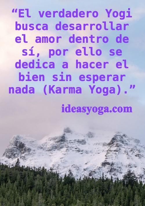 verdadero Yogi - Karma Yoga - Ideasyoga