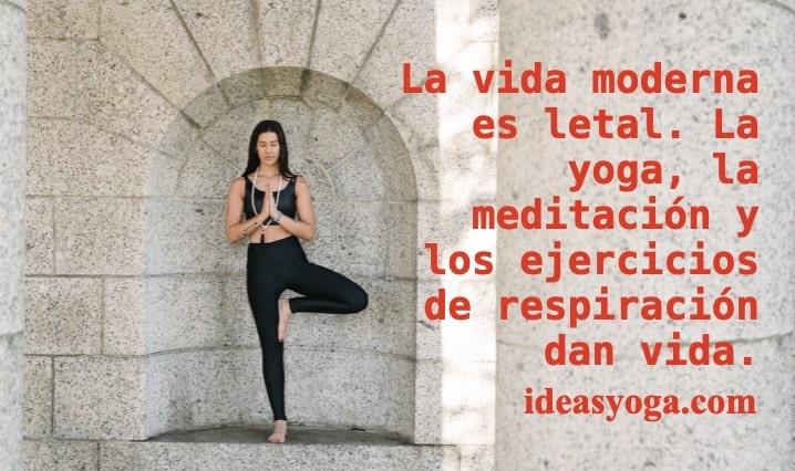 Lee más sobre el artículo EL YOGA Y LA ENERGÍA VITAL: RESPIRACIÓN.